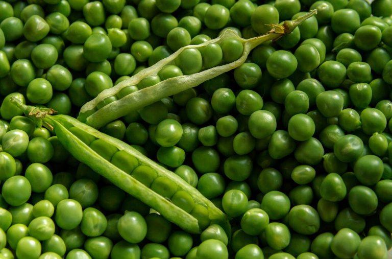 Verduras ricas en vitaminas. Guisantes.