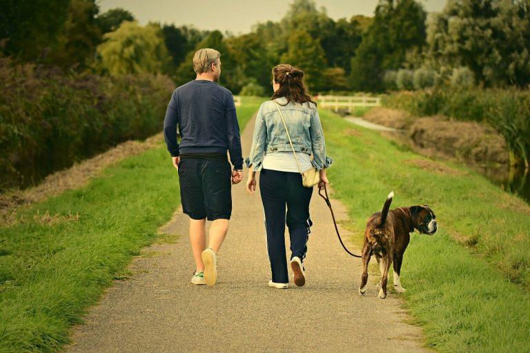 Ocios y aficiones habituales. Caminar Pasear.